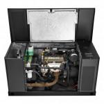 generadores electricos a gas briggs Stratton 30 kw 5 1